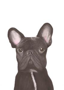 © Daniella Lo Presti, S. 53 Die Französische Bulldogge, 2014.