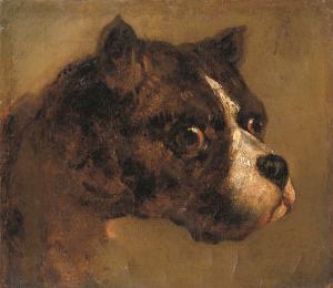 © Théodore Géricault, S. 49 Tête de Bouledogue, 19. Jahrhundert.