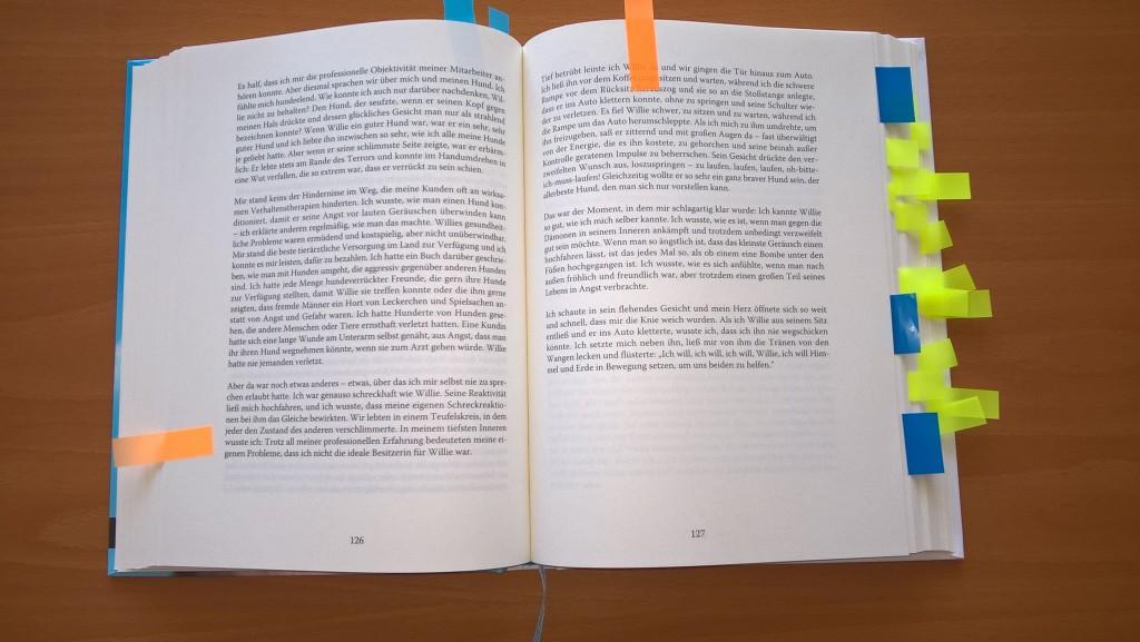 Mein Rezensionsexemplar sah nach dem Lesen aus, wie ein Lehrbuch aus der Unibibliothek, kurz vor einer wichtigen Prüfung